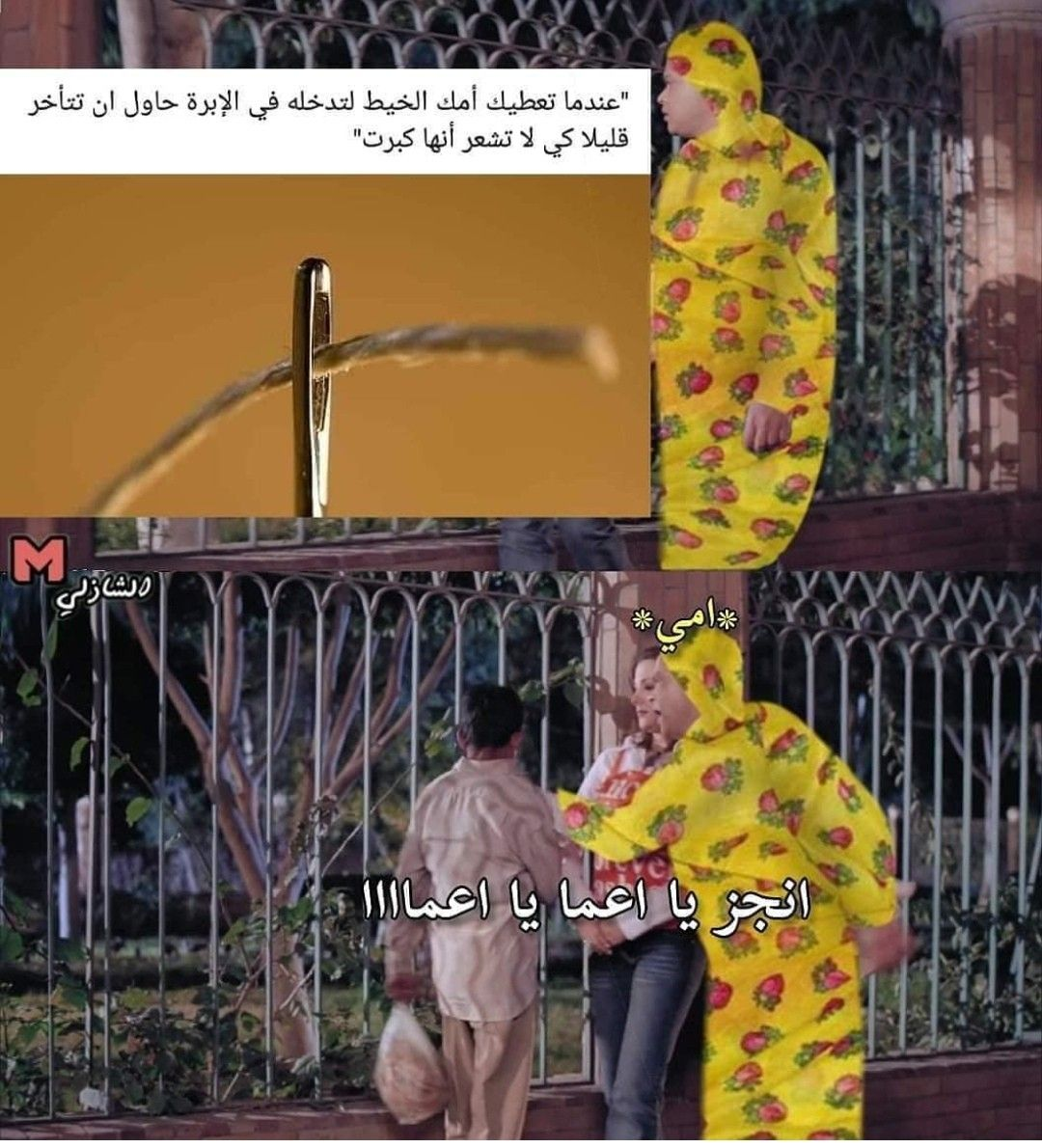 Pin By Queen Jaz On Funny In 2020 Funny Arabic Quotes Arabic Funny Funny Phrases