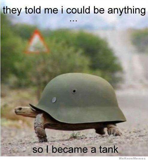 4e06491a72b7ab92771f911a27c7d35f tank turtle meme hilarious stuff pinterest turtle meme