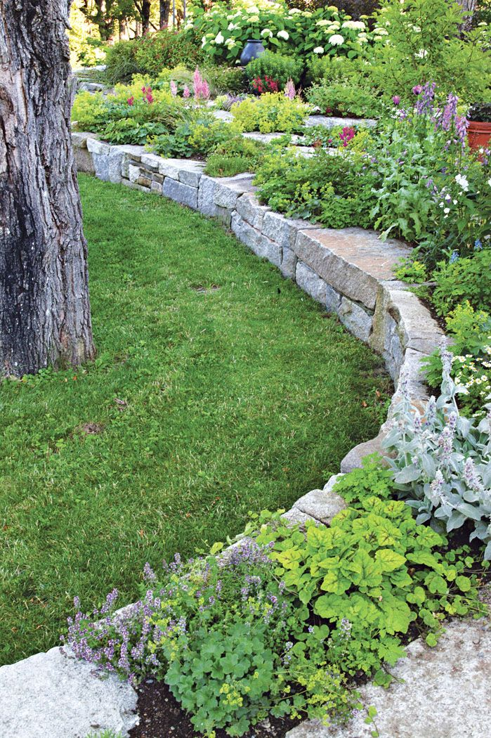 Conveying Energy In A Landscape Backyard Garden Outdoor Landscaping Traditional Landscape