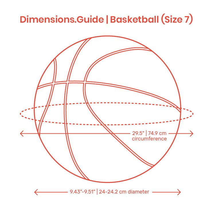 Basketball Sizes Come In Variations For Different Ages Genders And Level Of Play The Official Nba And Competitive Professi Basketball Tool Design Dimensions