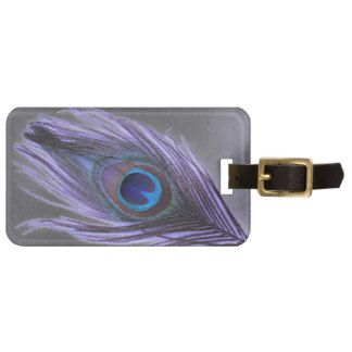Purple Peacock Feather on Black Background Tag For Luggage