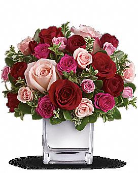Flowers flower delivery send flowers online teleflora spring flowers flower delivery send flowers online teleflora mightylinksfo