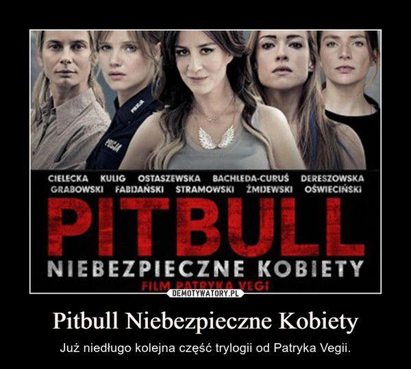 Pitbull Niebezpieczne Kobiety Download