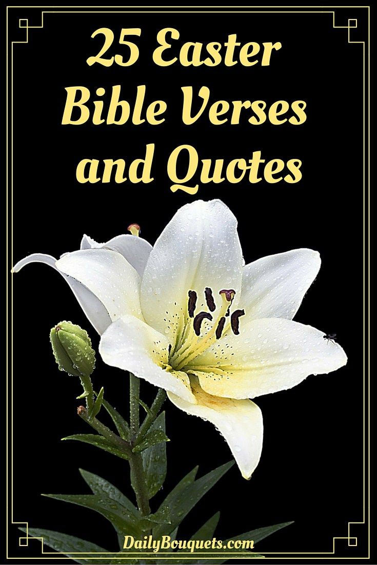 Easter Bible Quotes 25 Easter Bible Verses And Quotes  Easter Bible Verses Verses