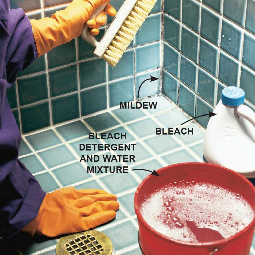 how to clean mold and mildew from walls