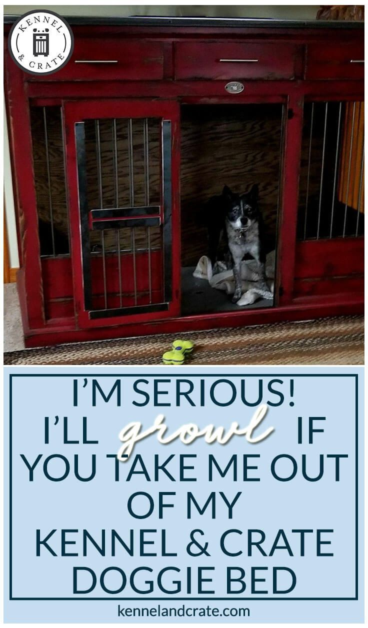 Replace your wire dog crate with a beautiful piece of