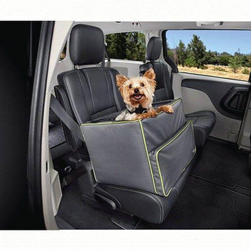 5 Accesorios Que Debes Tener Para Viajar Con Tu Perro En