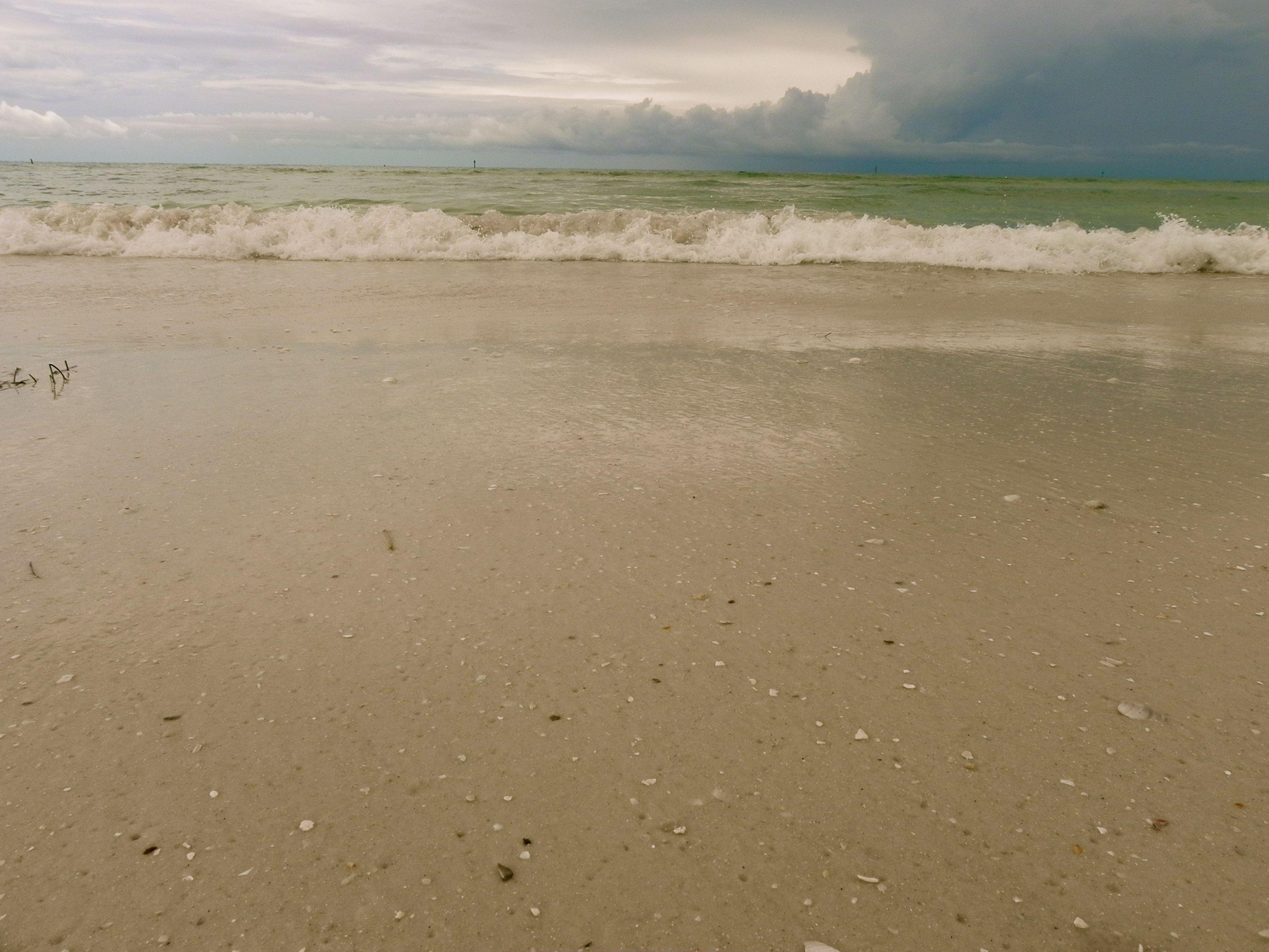 Honeymoon island florida lets take a trip pinterest honeymoon