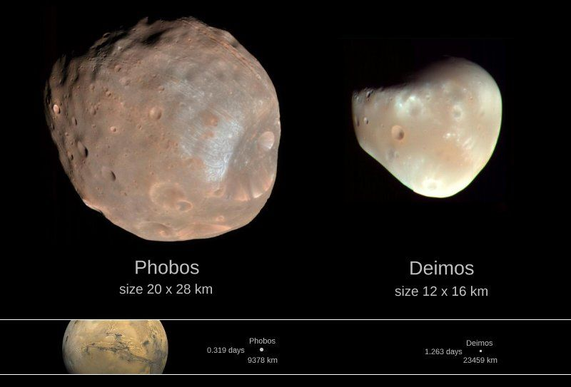 """Learn to Skywatch on Twitter: """"Fact:  Mars has 2 small moons called """"Phobos"""" and """"Deimos"""".  They are most likely captured asteroids. https://t.co/40u2rIMNMj"""""""