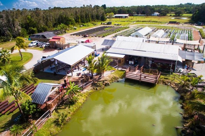 You can visit these familyfriendly sustainable farms in