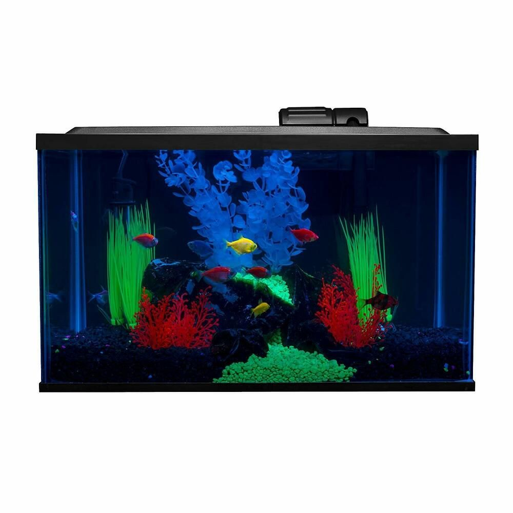 10 Gallon Glofish Aquarium Set Led Lighting Water Filter New Glofish Aquarium Glofish Aquarium Kit