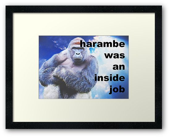 Harambe was an inside job :)