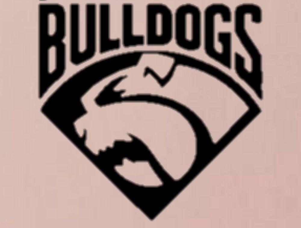 Western bulldogs car sticker in sporting goods afl australian rules merchandise ebay