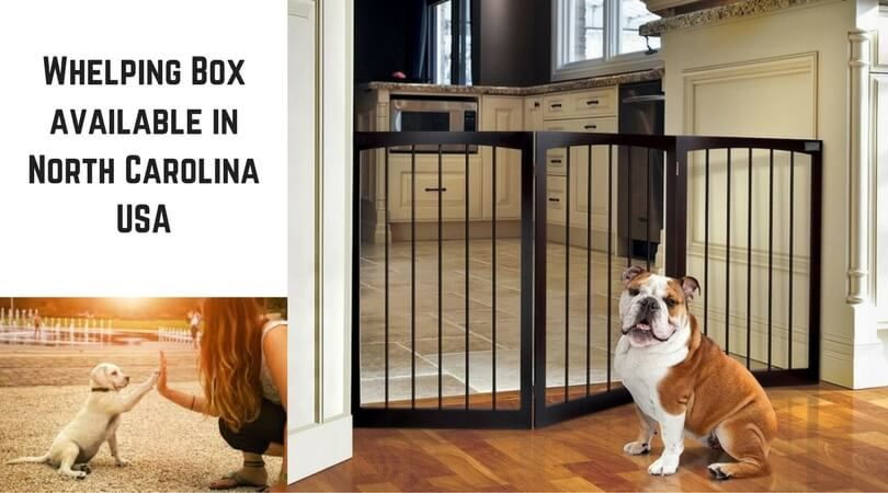 Whelping Box For Dogs Comfort Available In North Carolina Usa