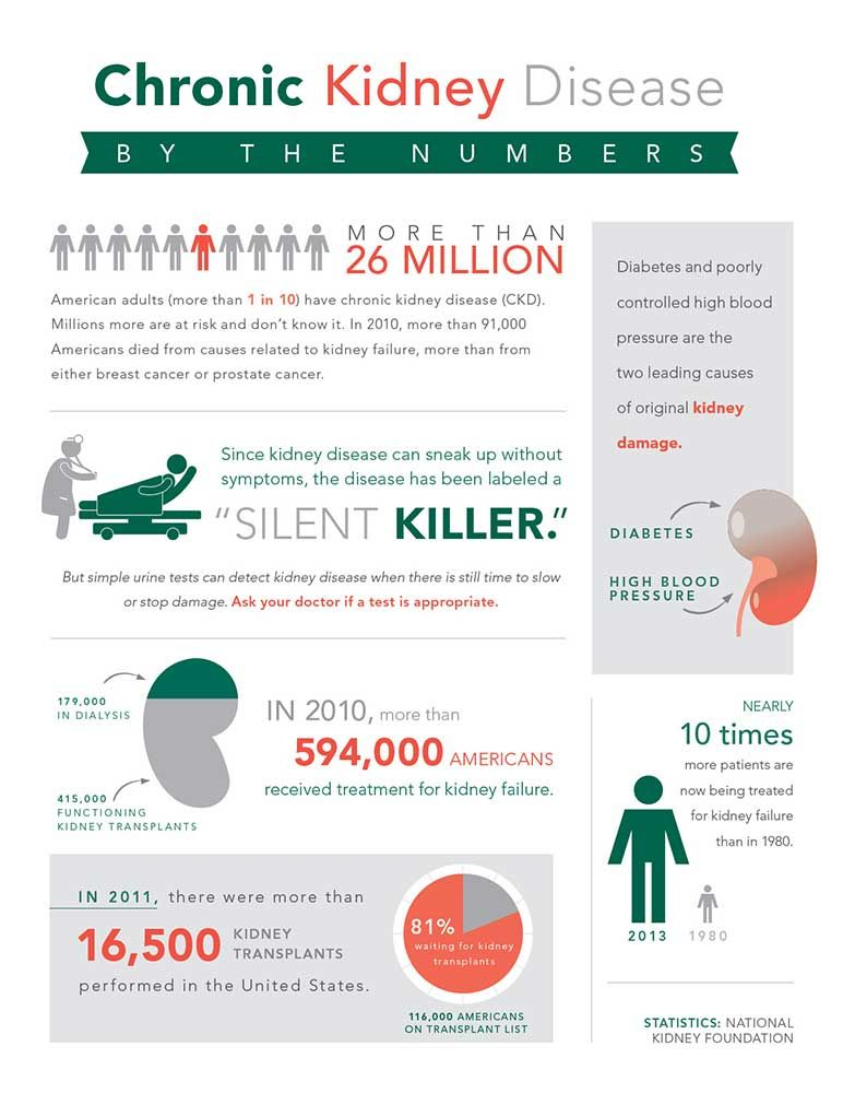 Infographic Neatly Displaying Kidney Disease Facts