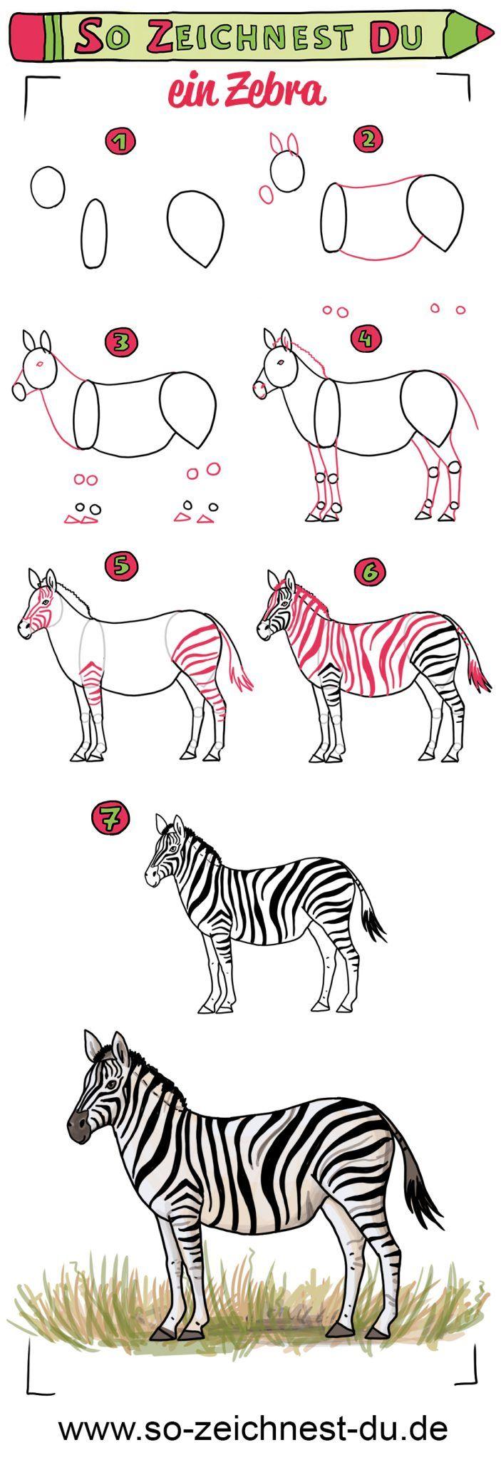 Zebras sind ganz besondere Pferde. Sie leben in der ...