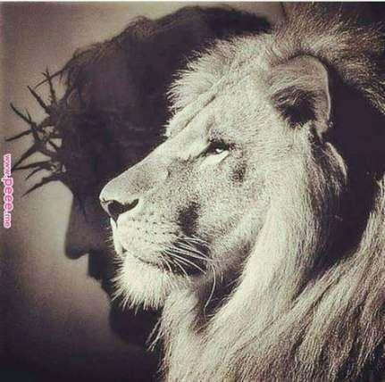 Tattoo Lion Of Judah Jesus 38+ Ideas