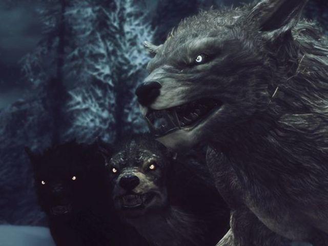Skyrim What Faction Suits You Skyrim Werewolf Skyrim Fanart Skyrim