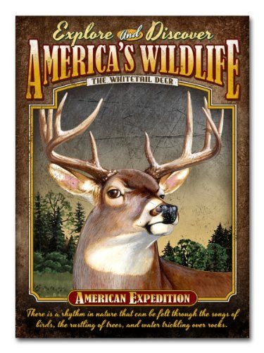 American Expedition Embossed Tin Cabin Signs (Whitetail Deer) American Expedition http://www.amazon.com/dp/B00HQMEBN2/ref=cm_sw_r_pi_dp_LNS6ub18612R5