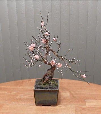 Amanda S Blog Zokei Bonsai Cherry Blossom Bonsai Tree Bonsai Tree Indoor Bonsai Tree