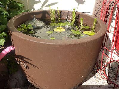 Diy Fabriquer Un Mini Bassin Aquatique Bassin Aquatique Petit Bassin De Jardin Bassin De Jardin