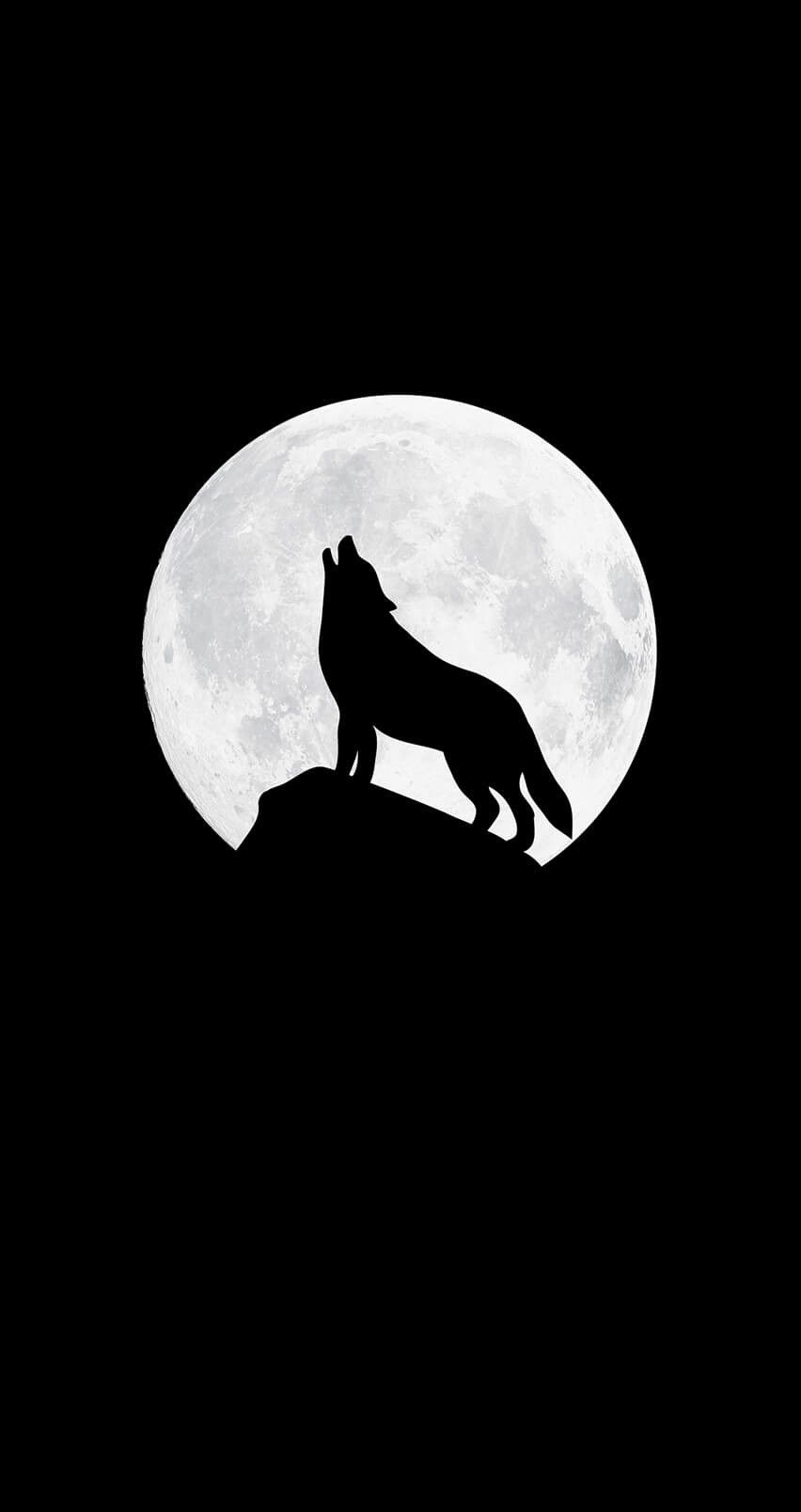 Dark Wolf Hd Wallpapers For Mobile Wallpaperzen Org