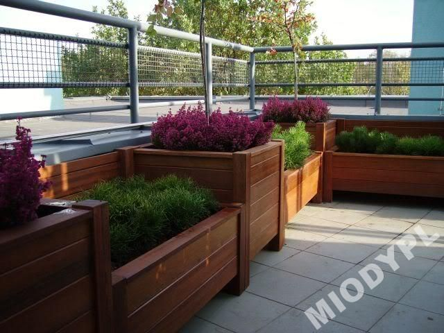 Donica Drewniana 50x50 Skrzynia Na Iglaki Kwiaty 4287446871 Oficjalne Archiwum Allegro Plants Garden Flower Pots