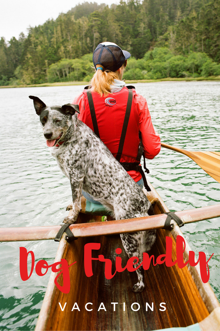 Top 21 Dog Friendly Vacations Summer In The West Pinterest Dog