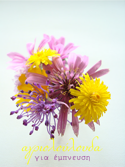Guest Post: Wildflowers for inspiration by Dimitra