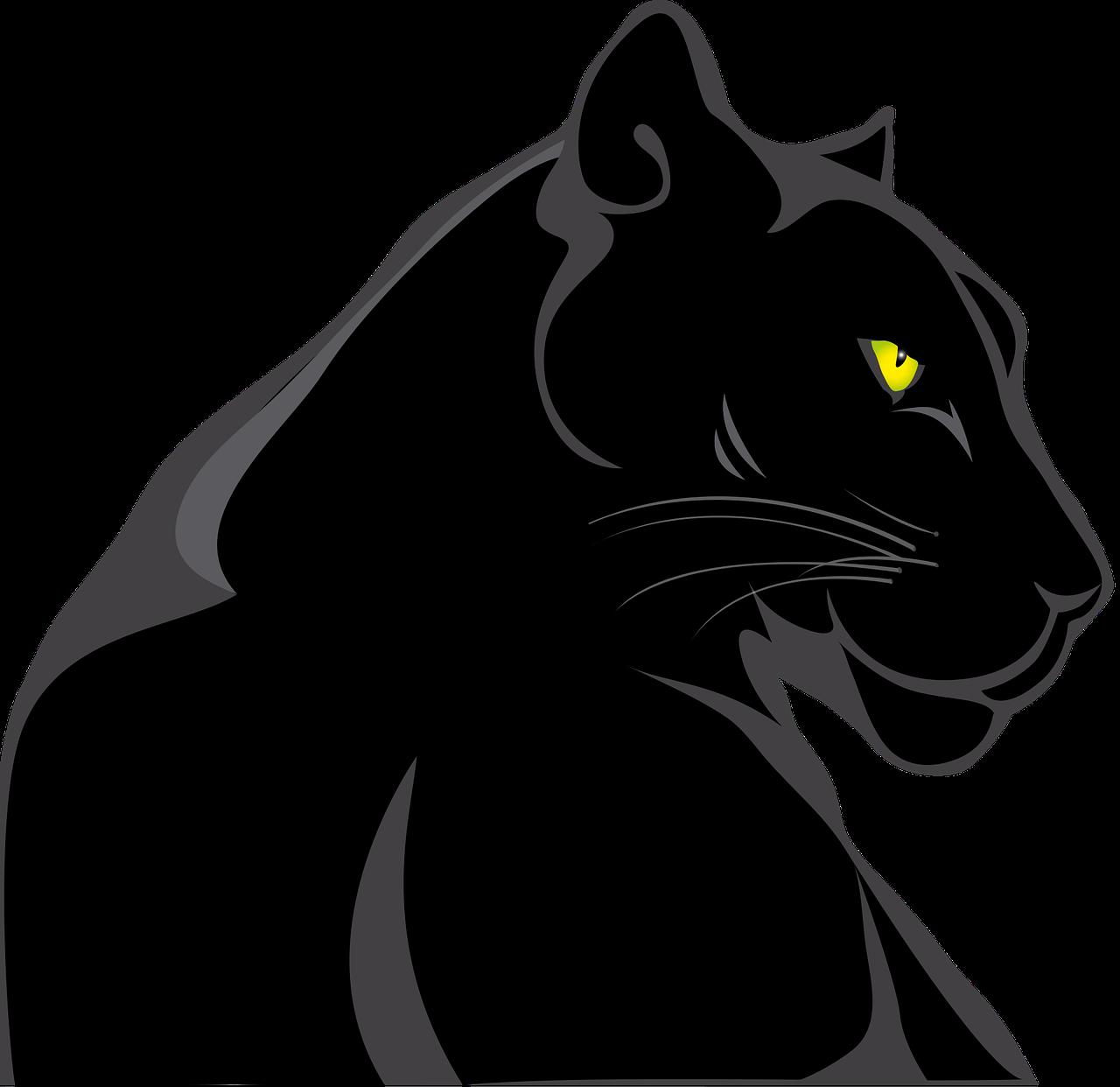 Free Image On Pixabay Panther Animals Feline Wild Panther Art Jaguar Animal Black Jaguar Animal