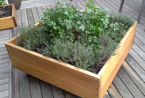 Future Environment Garden Builders Planter Box Ideas Jardin