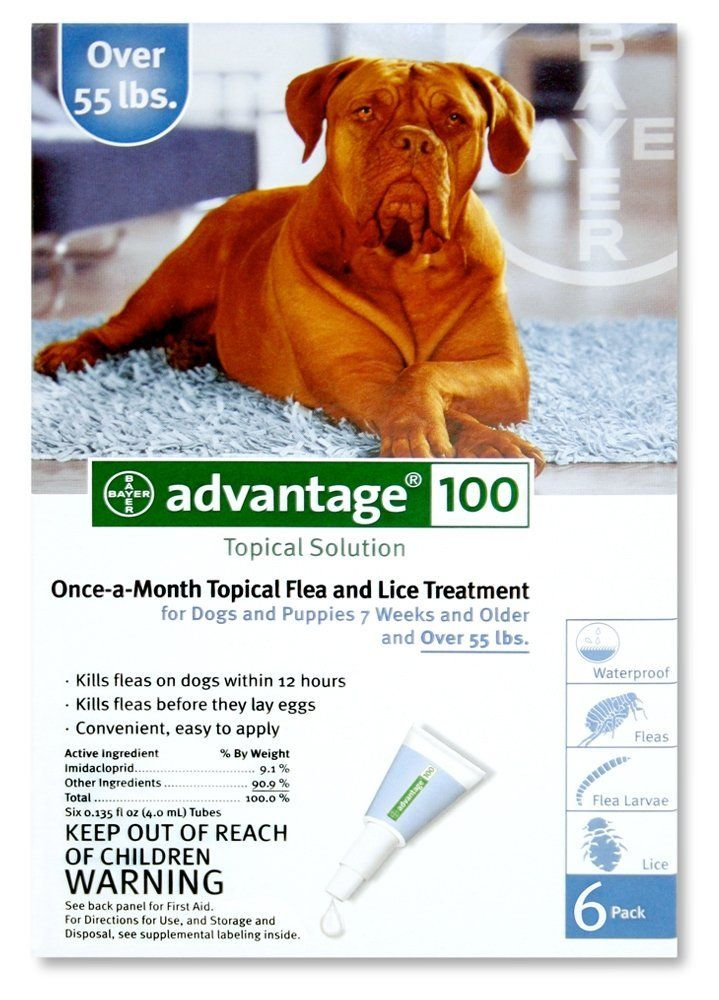 Bayer Topical Flea Treatment For Dogs Over 55 Lbs 6 Applications Review Http Www Bestfleamedici Flea Control For Dogs Flea Medicine For Dogs Flea Control