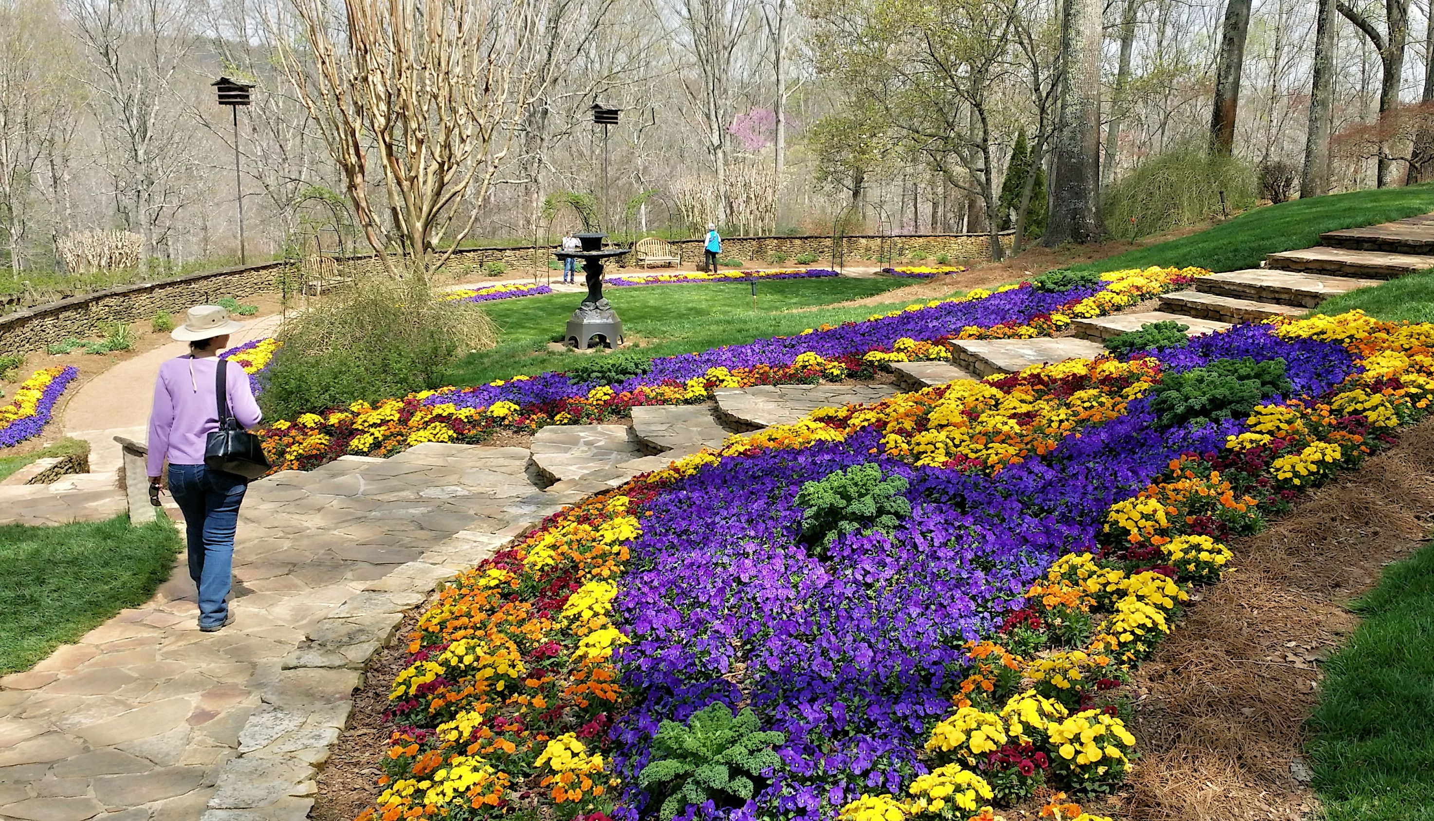 Beautiful Flower Beds