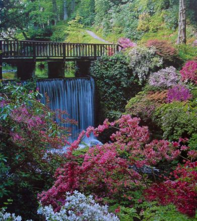 4e1309c528441f75ce10d9347d8ae668 - Places To Stay Near Bodnant Gardens