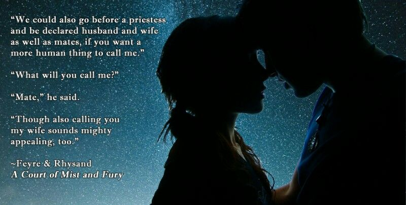Pin By Nienie On Acotar With Images A Court Of Mist And Fury