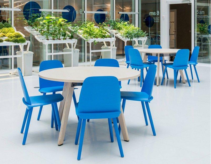 Wooden Chair NERD Nerd Collection By @muuto | #design David Geckeler #blue #
