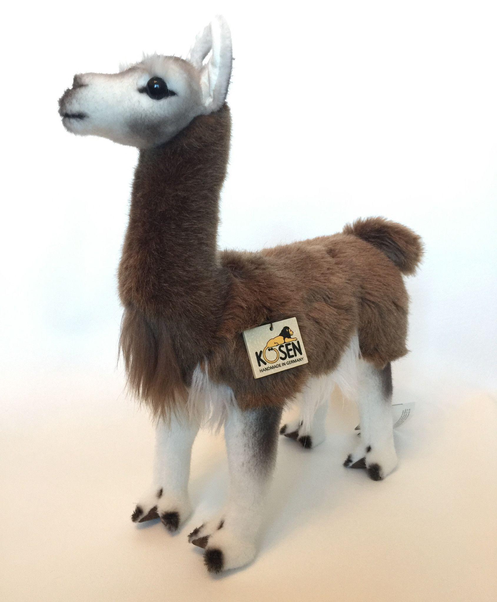 Pin on Alpacas & Llamas