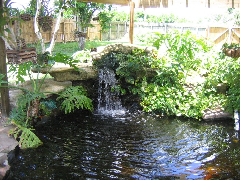 Pretty and small backyard fish pond ideas at decor for Fish ponds for small gardens