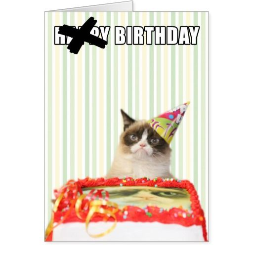 Grumpy Cat Happy Birthday Card Cat Pinterest Grumpy Cat