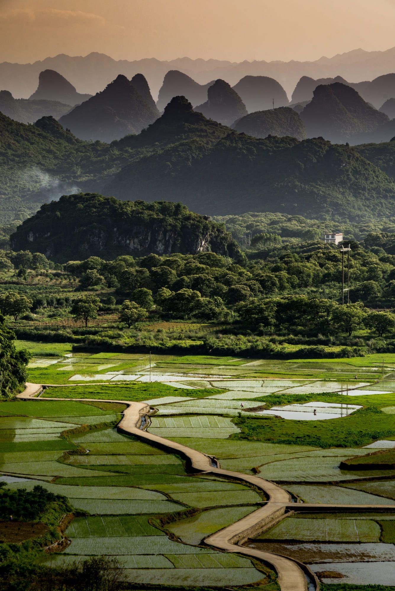 Rice Fields Putao China Mountain Photography Chinese Landscape Chinese Mountains
