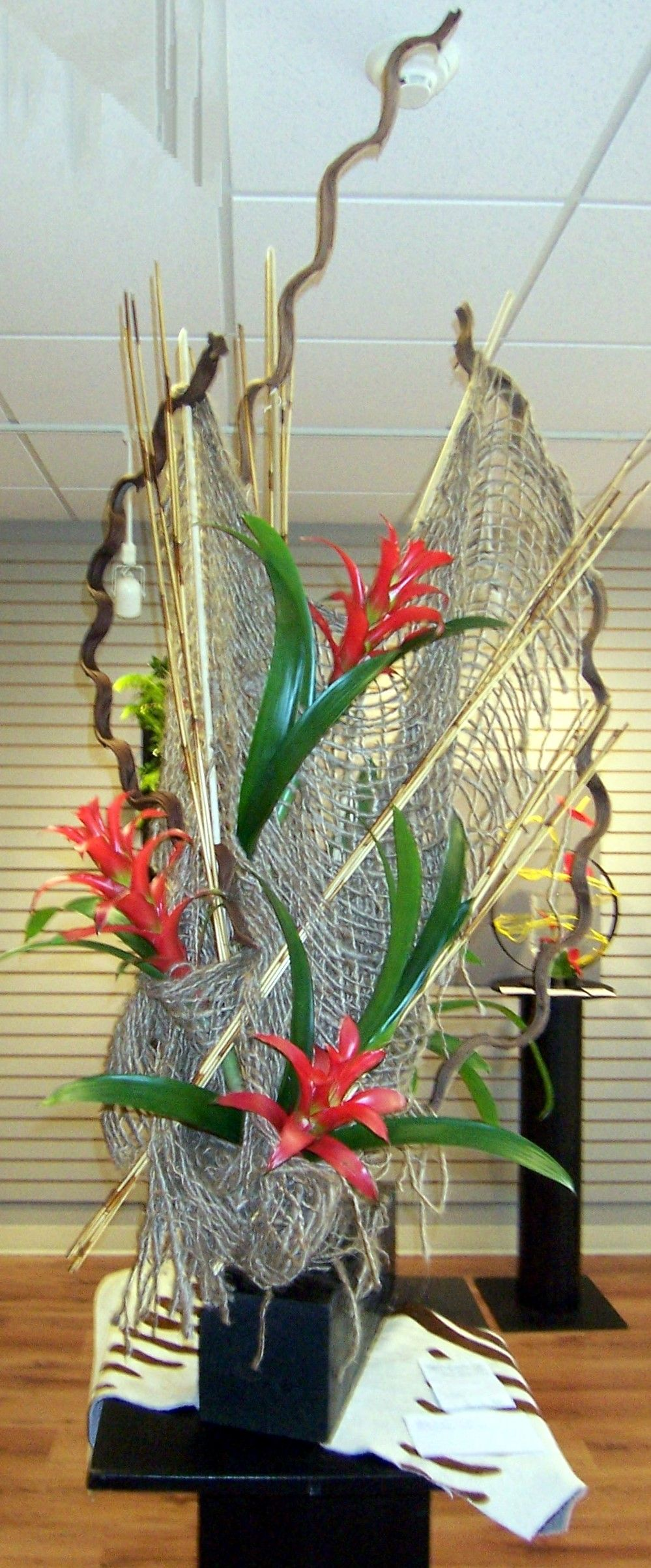 "The Garden Club of Ellijay's flower show, ""Cherokee Beauty"" First place Armature winner, Frankie Willis"