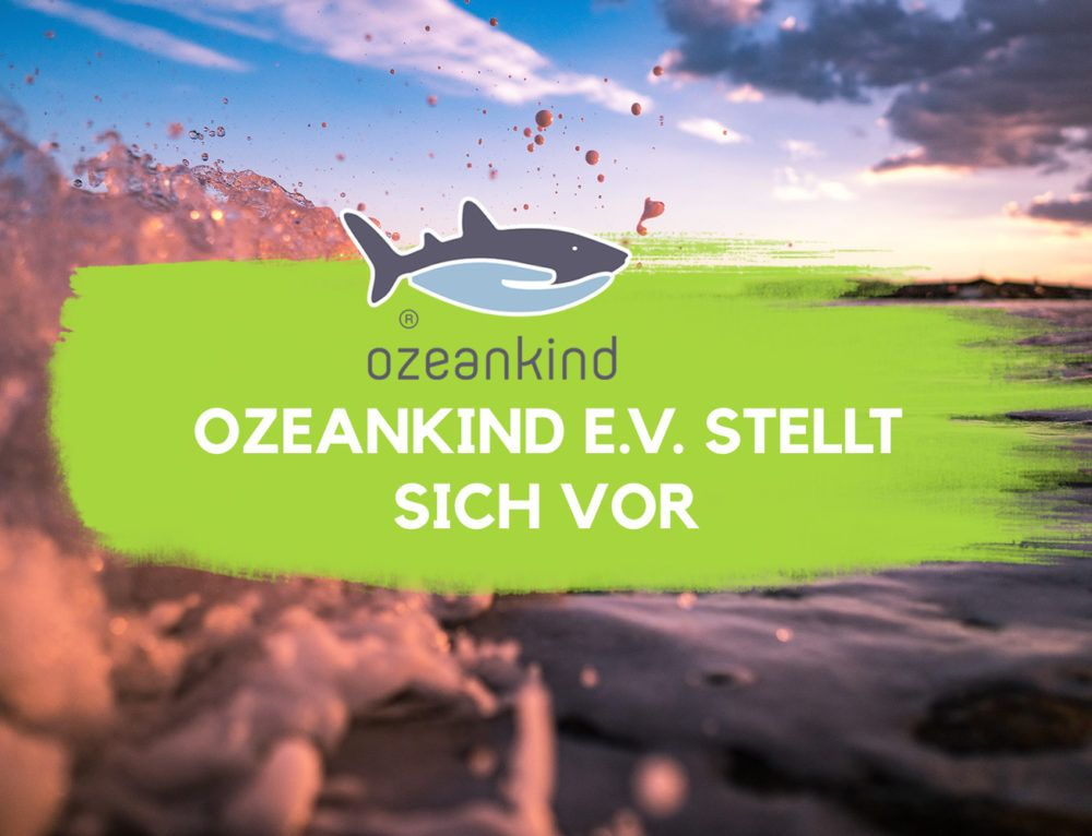 Unser neuer Partner: Ozeankind e.V. stellt sich vor | EcoYou