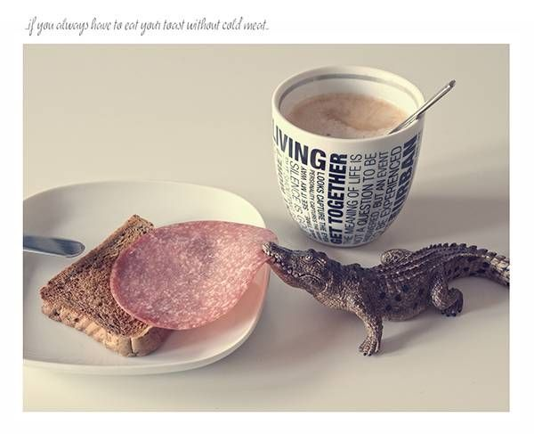 Life's no Fair Photo Series Tells Us Some Truth with the Cute Miniature Animials