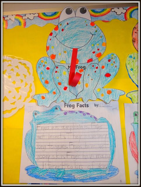 A Froggy Fable And Frog Life Cycles