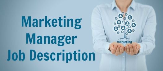 Sample Marketing Manager Job Description Job description and Job - responsibilities of a marketing director