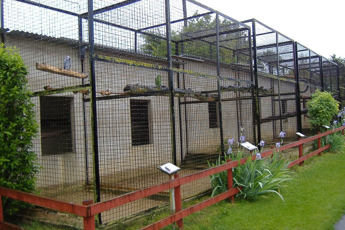 Image detail for -Wellplace parrot aviaries » Wellplace Zoo (Closed ...
