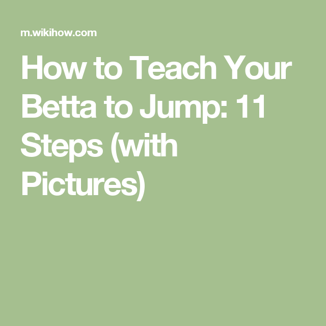 How to Teach Your Betta to Jump: 11 Steps (with Pictures)