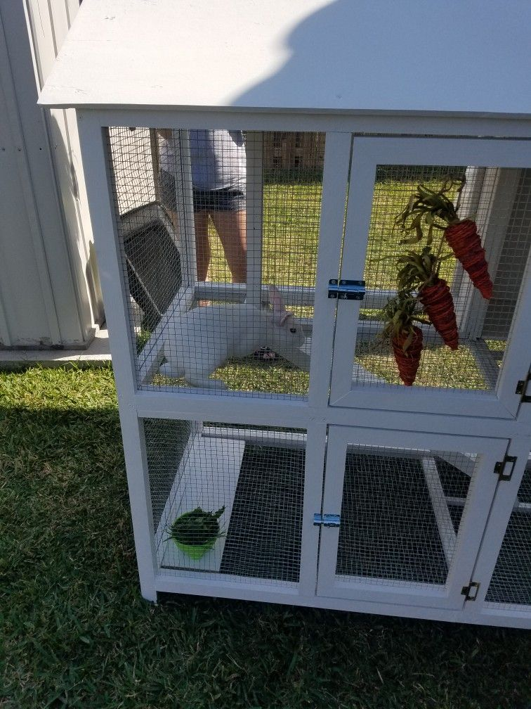 Rabbit Cage Outdoor Rabbit Cage Projects