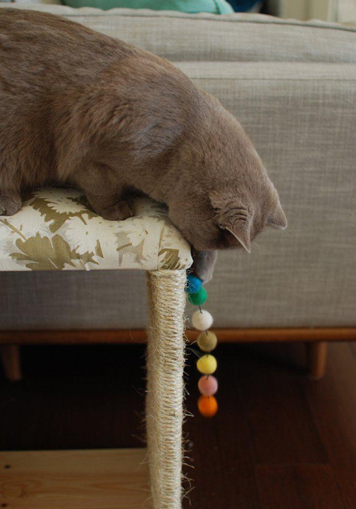 DIY chat : 11 accessoires et jouets à faire soi-même | Diy chat, Jeux pour chat et Griffoir chat