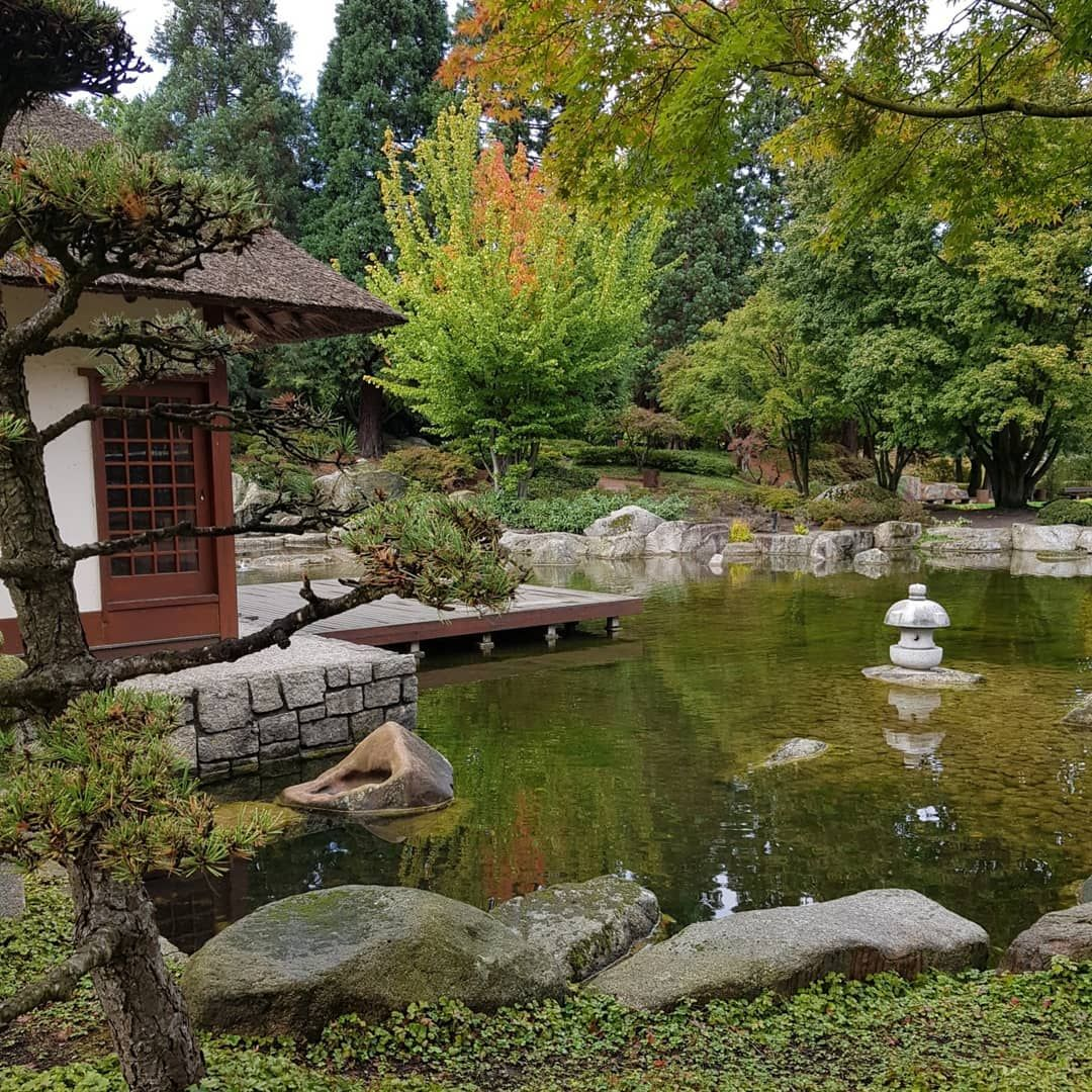 Pin Auf Japanischergarten